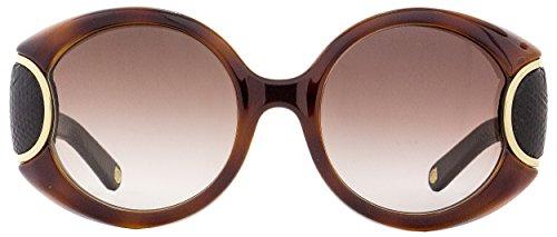 Ferragamo Leather Signature black 233 Sunglasses Sf811sl W Havana qxvpnZnT