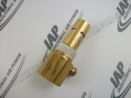P05822A, Champion Check Valve In-Tank by Industrial Air Power