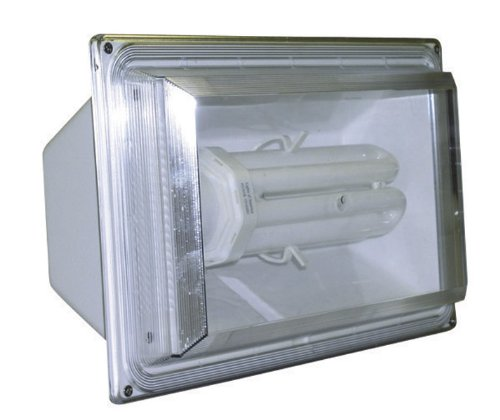 65 Watt Fluorescent Flood Light