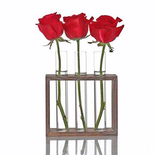 Test Tube Rack Planter, Transparent Hydroponic Flower Clear Vase with Wood Stand Frame Perfect for Coffee Shop Home Office Wall Decoration (A) (Stand Creative)