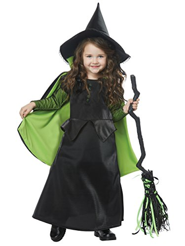 California Costumes Wicked Witch of Oz Toddler Costume-Medium (3-4)