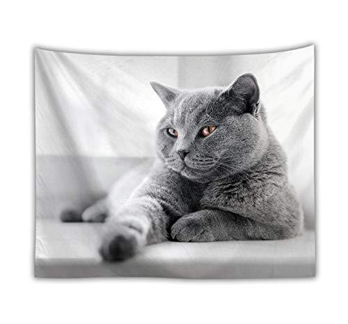(Sunnyillumine Playful as A Kitten Black and White Tapestry Lovely Wall Art Beach Throw Towel Yoga Mat (Playful Kitten 02))