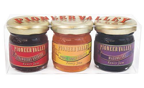 Pioneer Valley Gourmet Mini Jam Sampler 3 Pack 1.5oz Each - Marionberry, Apricot Chunky Pineapple, Strawberry Rhubarb