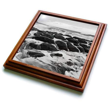 - 3dRose Danita Delimont - Seascapes - USA, Hawaii, Kauai. Black and white of rocky shoreline. - 8x8 Trivet with 6x6 ceramic tile (trv_314789_1)