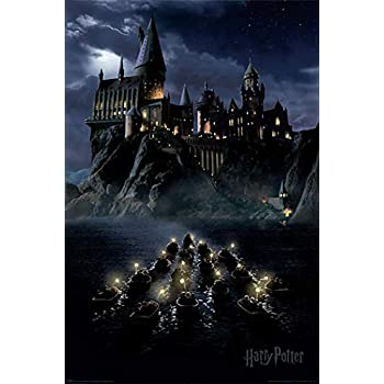 HARRY POTTER- Movie Poster (Hogwarts & Boats by Night) (Size: 24 inches x 36 inches)