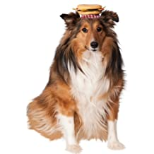 Rubies Costume Co Cheeseburger Hat for Pets, Medium/Large