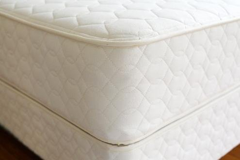 Savvy Rest Organic Mattress (Earthspring (Queen))
