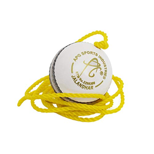 APG White Leather Cricket Hanging Ball for Practice and Bat Knocking with (7 ft Approx) Rope
