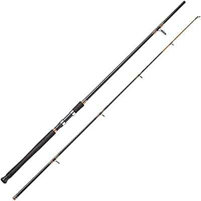 Caña Spinning Dam maxi-stick Heavy 2,40 M: Amazon.es: Deportes y ...