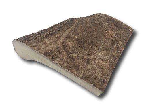 Top Dog Chews XL Large Moose Panel Antler - USA Shed Antler Chew - Single Antler - Moose Shed Antlers