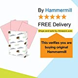 Hammermill Colored Paper, 20 lb Pink Printer