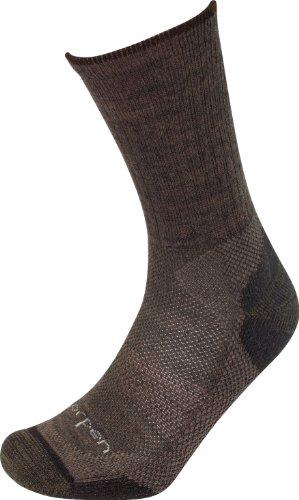 Lorpen T2W Merino Light Hiker-Two Pack Sock (Earth, Large)