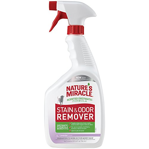 Natures Miracle Lavender Stain Remover