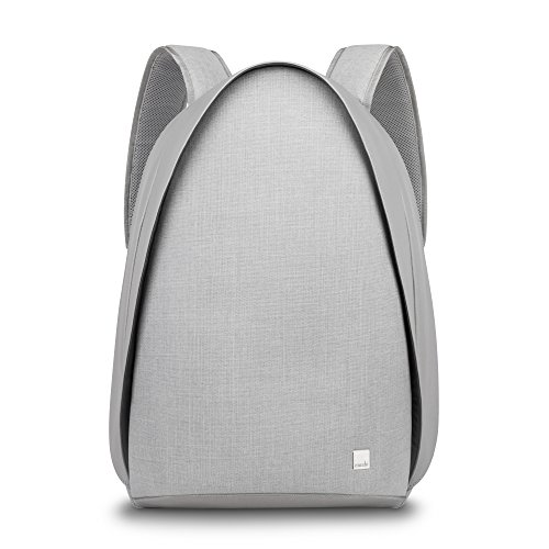 Moshi Tego anti-theft Backpack with USB Charging Port ,Water Resistant (Stone (Security Fast Pass Laptop)