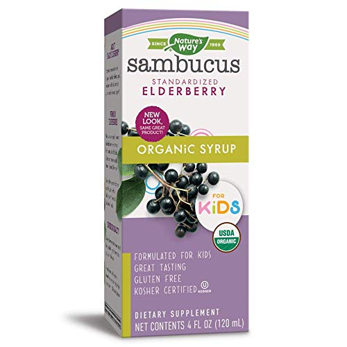 Nature's Way Sambucus for Kids, Organic Elderberry Syrup, 4 oz, 4 Fluid Ounce (Packaging May Vary)