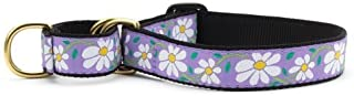 product image for Up Country Daisy Martingale Dog Collar - Large (13.5-22.5 Inches) - 1 in Width