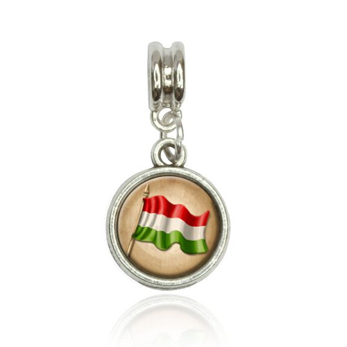 Plastic Vintage Charms (Vintage Hungarian Flag Hungary Euro European Italian Style Bracelet Bead Charm)