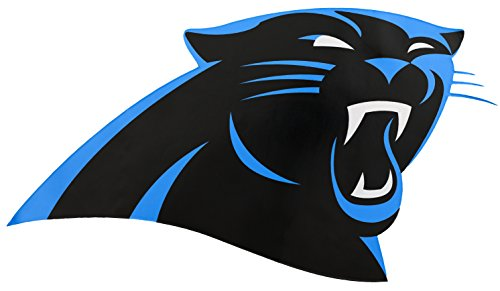 Applied Icon, NFL Carolina Panthers Outdoor Small Primary Logo Graphic Decal