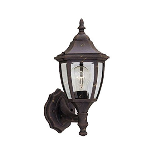 Designers Fountain 2462-AG Builder Cast Aluminum Collection 1-Light Exterior Wall Lantern, Autumn Gold Finish with Clear Beveled (Autumn Lanterns)
