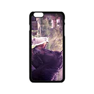 Horse And Cat Hight Quality Plastic Case for Iphone 6