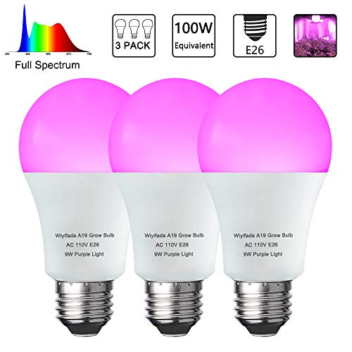 3 Pack Led Indoor