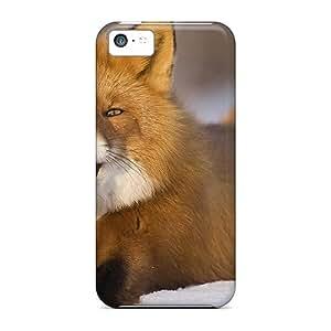 Hot Design Premium XUGOrOO5091HMPKb Tpu Case Cover Iphone 5c Protection Case(arctic Fox)