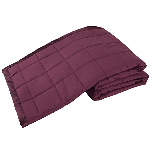 Elite Home Products Down Down Alternative Solid Blankets, King, Cabernet