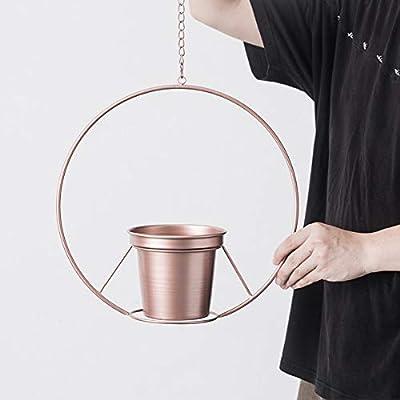 Hiplus Boho Rose Gold Metal Plant Hanger,Metal Round Hanging Planter, Modern Flower Pot Holder Planter, Mid Century Plant Holder, Minimalist Planter for Indoor Outdoor Home Decor (Rose Gold): Garden & Outdoor