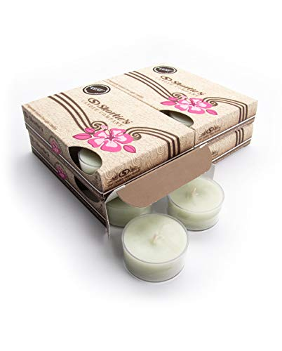 Eucalyptus Leaf Tealight Candles Bulk Pack (24 Green Highly Scented Tea Lights) - Made with Essential & Natural Oils - Clear Cup for Beautiful Candlelight - Fresh & Clean - Tealight Candle Leaf