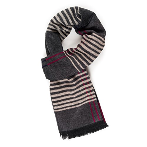 Scarf for Men: Reversible Elegant Classic Warm Cashmere Soft Scarves for Fall Winter (TA04-13) ()
