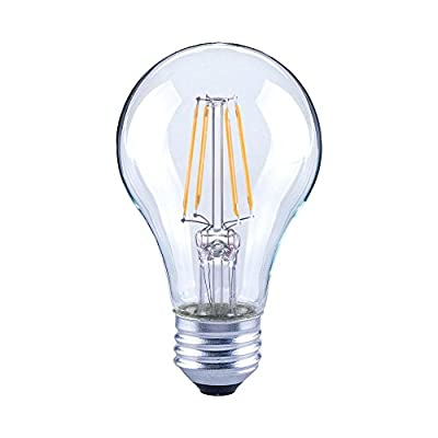 Asencia AN-03666 40 Watt Equivalent A19 Clear All Glass Vintage Filament Dimmable LED Light Bulb