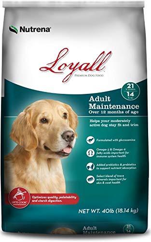 Loyall Adult Maintenance 40lb