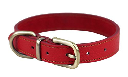 ZEEY Durable Soft Leather Adjustable Basic Dog Collar, Neck 33cm-39cm and 2cm Wide, Easy to Use Copper Collar Belt…