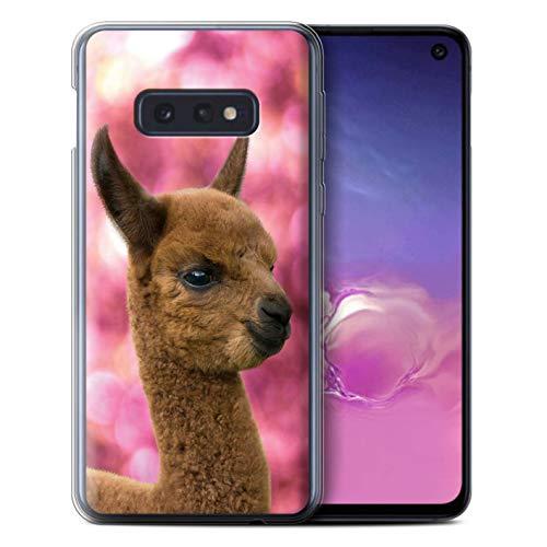 eSwish Gel TPU Phone Case/Cover for Samsung Galaxy S10e / Cria/Baby Design/South America Alpaca Collection