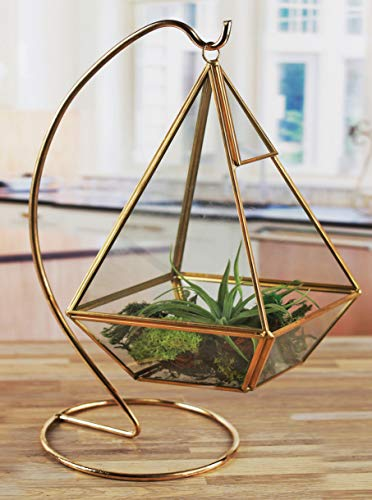 Circleware 32508 Terraria Glass Gold Frame Terrarium with Stand Home Decor Flower Balcony Display Box and Garden Gifts 6.3