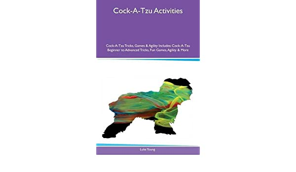 Cock-A-Tzu Activities Cock-A-Tzu Tricks, Games & Agility ...