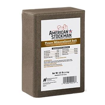 Amazon Com North American Salt 90013 Trace Mineral Brick Pet