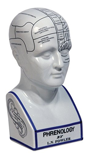 on Phrenology Head ()