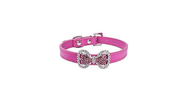 CAOQAO - Collares de Piel para Cachorros pequeños y Gatos, Color ...