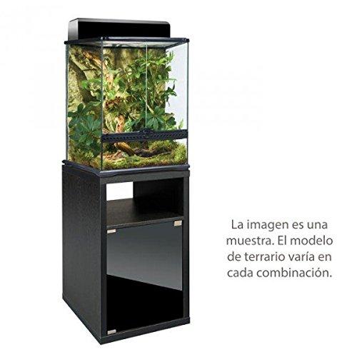 EXO TERRA Terrarium Combination 45X45X30 Glass Terrarium With Cabinet, Terrarienbeleuchtu Curtain – Terrarienk Complete Set