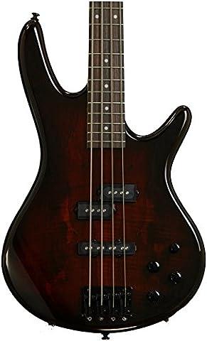 Ibanez GSR200SM 4-String Electric Bass Guitar, GSR4 Maple Neck, Rosewood Fretboard, Charcoal Brown (Ibanez Bass Gsr200sm)