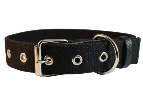 "Cotton Web Dog Collar 3/4"" Wide. Fits 13""-17"" Neck. Boston Terrier, Spaniel"