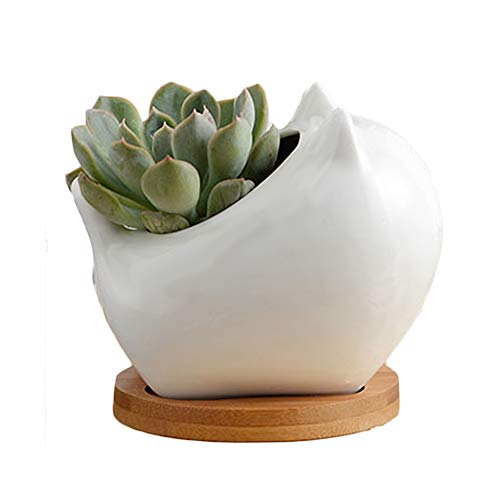 Yousun Ceramic Small Planter Pot,White Succulent Plant Pot Cactus Garden Indoor Flower Pot with Bamboo Tray Container Planter for Succulents