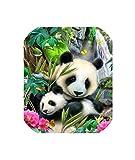 Wild-lOVE 5D DIY Diamond Animal Painting Panda Round Full Diamond Embroidery Cross Stitch Crystal Diamond Painting Wall, Gift,Verde,85X115CM