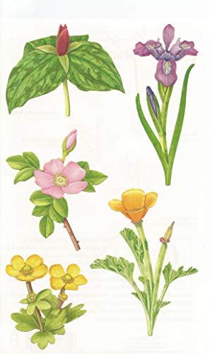 - Mrs. Grossman's Wild Flowers Stickers