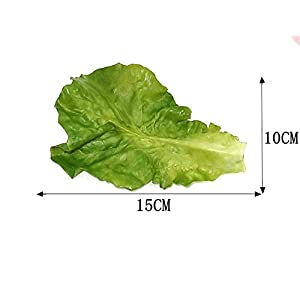 Skyseen 10Pcs Artificial Vegetable Lettuce Leaves Simulation Fake Lifelike for Home Party Kitchen Festival Decoration 2