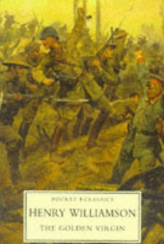 A Solitary War (A Chronicle of Ancient Sunlight, Book 13)