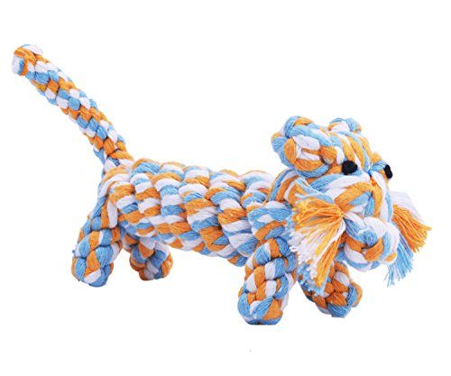 EXPAWLORER Cotton Dental Teaser Puppy Pet Chew Rope Toys for Small Dog Biting 9-inch,Tiger