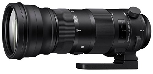 Sigma 150-600mm f5-6.3 DG OS HSM Sports for Canon EOS - 3