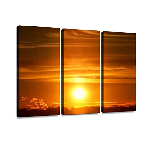 Sunset in Illinois Print On Canvas Wall Artwork Modern Photography Home Decor Unique Pattern Stretched and Framed 3 Piece (Illinois Photography In)